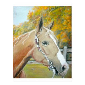 Palomino, pastel del caballo postal