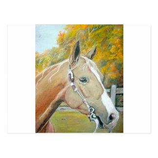 Palomino, pastel del caballo postales