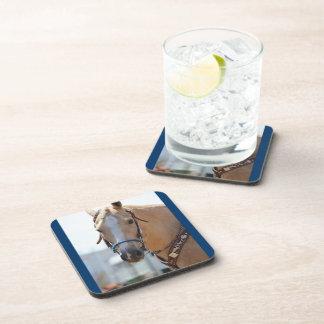 Palomino Pic Beverage Coaster