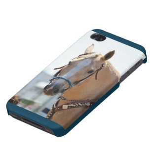 Palomino Pic iPhone 4/4S Cases