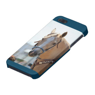 Palomino Pic iPhone 5/5S Cases