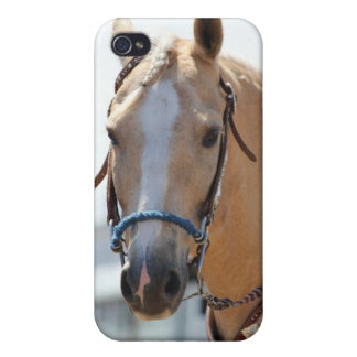 Palomino Pic Cover For iPhone 4