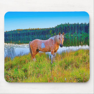 Palomino Pinto by Lake and Forest Scene Mouse Pad