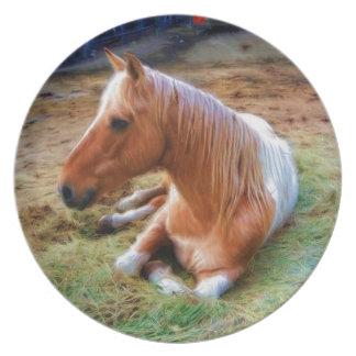 Palomino Pinto Horse Resting Artwork Melamine Plate