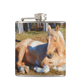 Palomino Pinto Horse Resting Photo Gift Hip Flask