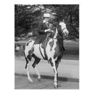 Palomino Pony, 1915 Postal