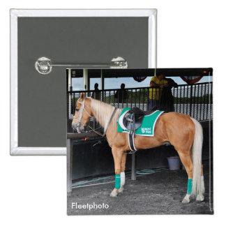Palomino Pony at Belmont Park Pinback Buttons