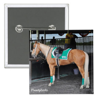 Palomino Pony at Belmont Park Pinback Button