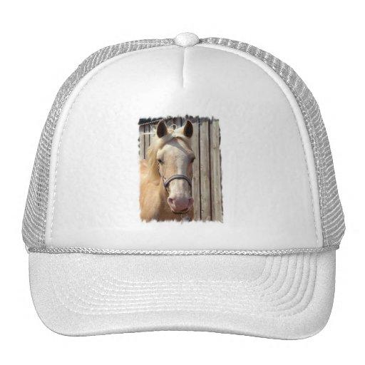 Palomino Pony Baseball Hat