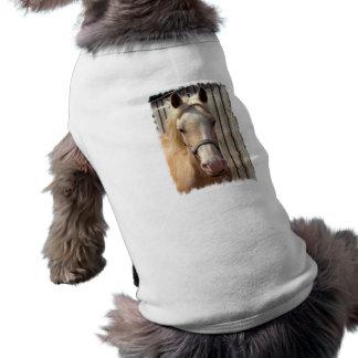 Palomino Pony Pet Shirt