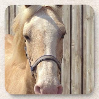 Palomino Pony Set of Coasters