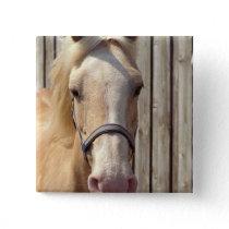 Palomino Pony Square Pin
