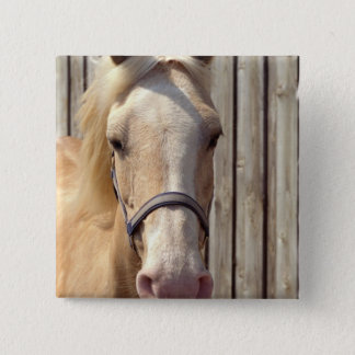 Palomino Pony Square Pin
