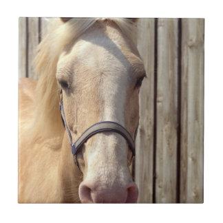Palomino Pony Tile