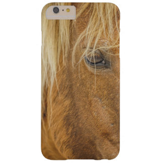 Palomino Portrait Barely There iPhone 6 Plus Case