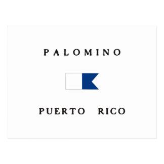 Palomino Puerto Rico Alpha Dive Flag Postcard
