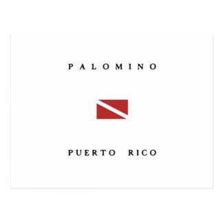 Palomino Puerto Rico Scuba Dive Flag Postcard