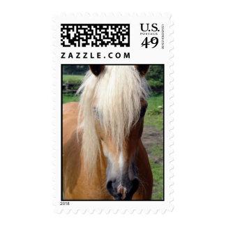 Palomino Quarter Horse Postage Stamp