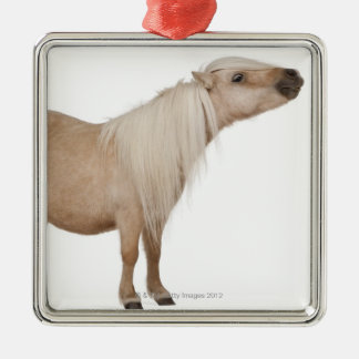 Palomino Shetland pony - Equus caballus (3 years Metal Ornament