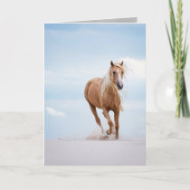 Palomino Stallion in the Dunes Horse Greeting Card