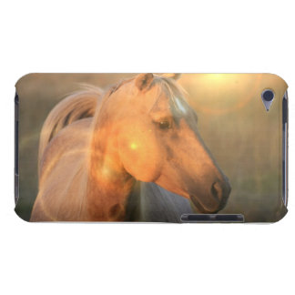 Palomino Sunlight Design iTouch Case iPod Touch Cases