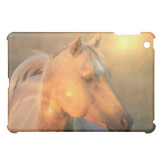 Palomino Sunlight Horse iPad Case