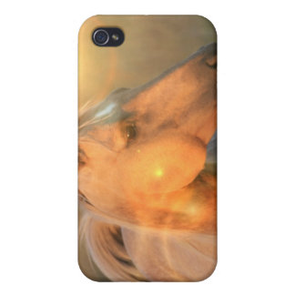 Palomino Sunlight Horse iPhone Case iPhone 4 Cover