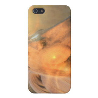 Palomino Sunlight Horse iPhone Case Case For iPhone 5