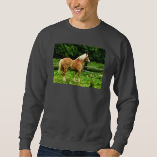 Palomino Walking Away Pull Over Sweatshirts