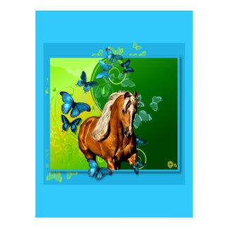 Palomino y mariposas tarjetas postales