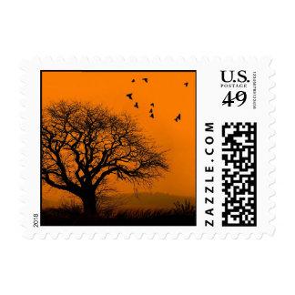 palos frescos en la puesta del sol timbre postal