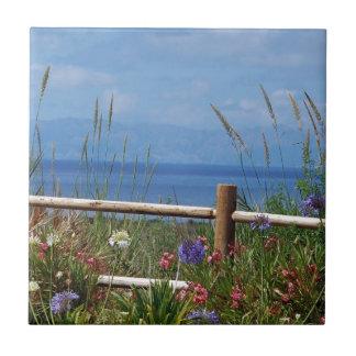 Palos Verdes y escena de Catalina Azulejo Cuadrado Pequeño