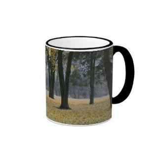 Palouse City Park Ringer Mug