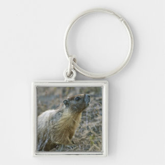 Palouse Falls State Park Keychain