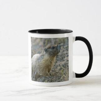 Palouse Falls State Park Mug
