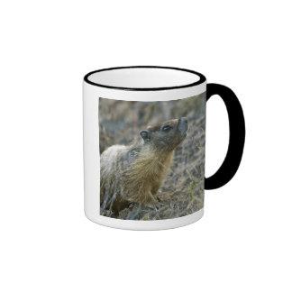 Palouse Falls State Park Ringer Mug