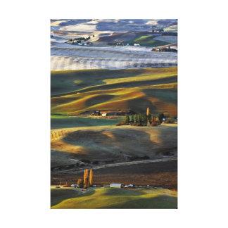 Palouse Sunrise Canvas Print