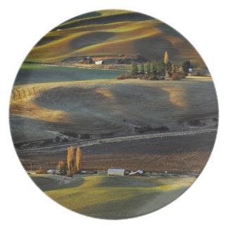 Palouse Sunrise Party Plate