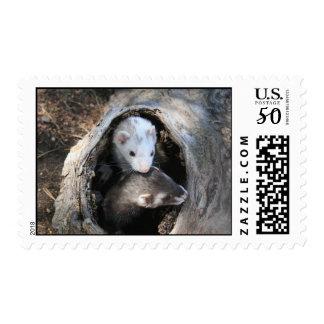 Pals Stamp