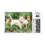 'Pals' Two dogs and a cat in a garden. Stamp
