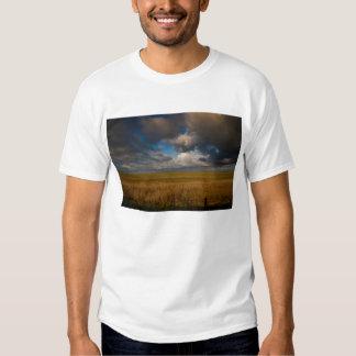 Pampa Camisas
