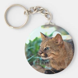 Pampas cat (Felis colocolo) Key Chains