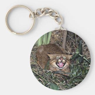 Pampas cat (Felis colocolo) Keychain