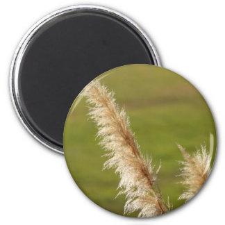 Pampas Grass 2 Inch Round Magnet