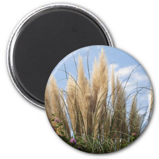 pampas grass and blue sky 2 inch round magnet