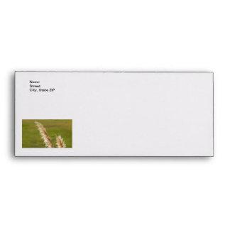 Pampas Grass Envelopes