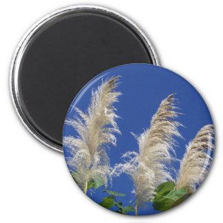 Pampas Grass In Bloom 2 Inch Round Magnet