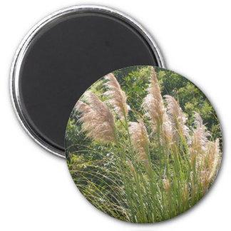 Pampas Grass Magnet