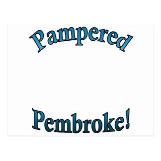 Pampered Pembroke - TealTemplate Post Cards