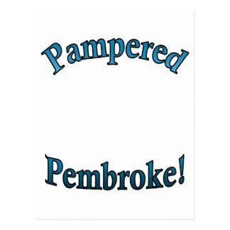 Pampered Pembroke - TealTemplate Postcard